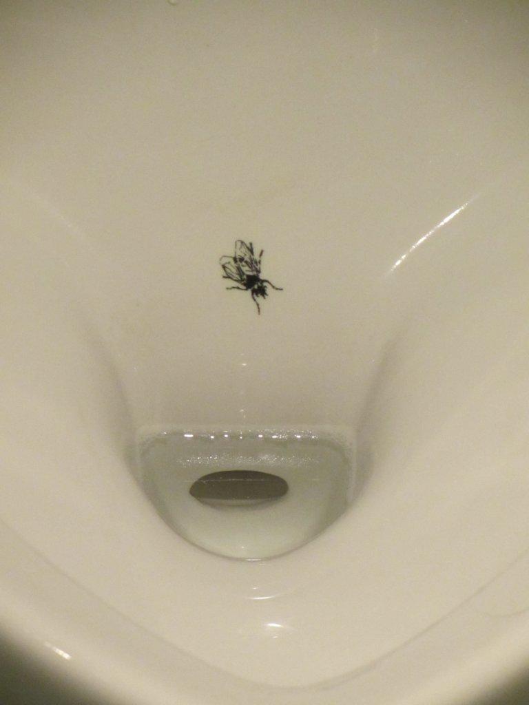 So sorgt man für Sauberkeit auf der Toilette (© https://commons.wikimedia.org/wiki/File:Urinal_FLy2.JPG).